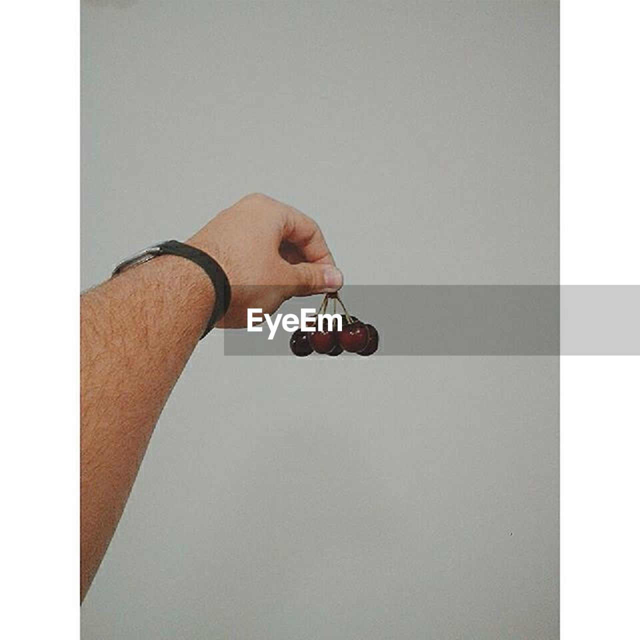 human hand, human body part, one person, one man only, holding, close-up, people, only men, white background, indoors, day, adult, adults only