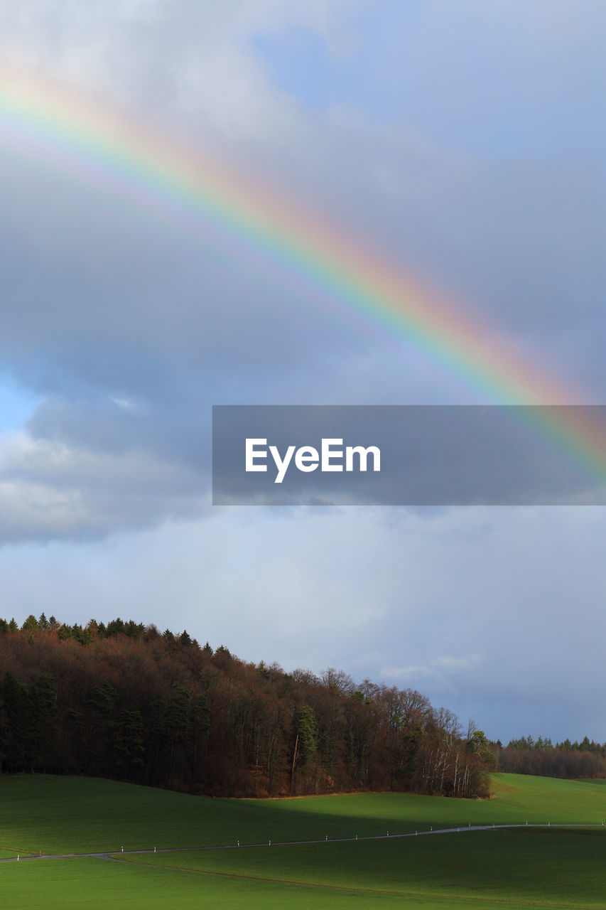 beauty in nature, rainbow, scenics - nature, sky, multi colored, tree, tranquility, cloud - sky, plant, nature, tranquil scene, non-urban scene, no people, water, idyllic, day, landscape, environment, natural phenomenon, outdoors, double rainbow