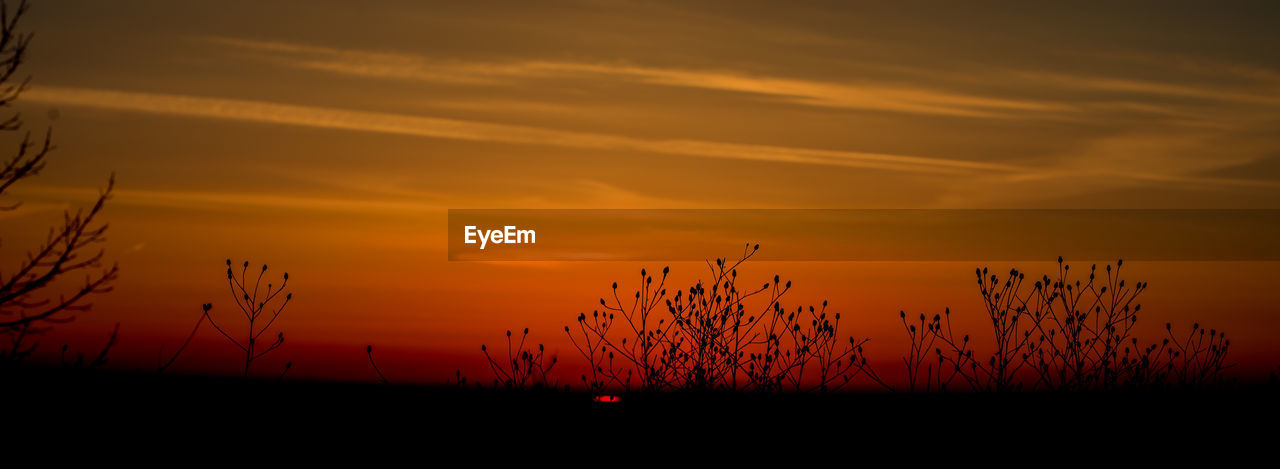 sunset, sky, orange color, beauty in nature, scenics - nature, silhouette, cloud - sky, tranquility, tranquil scene, idyllic, no people, plant, nature, field, non-urban scene, landscape, land, growth, environment, outdoors, romantic sky