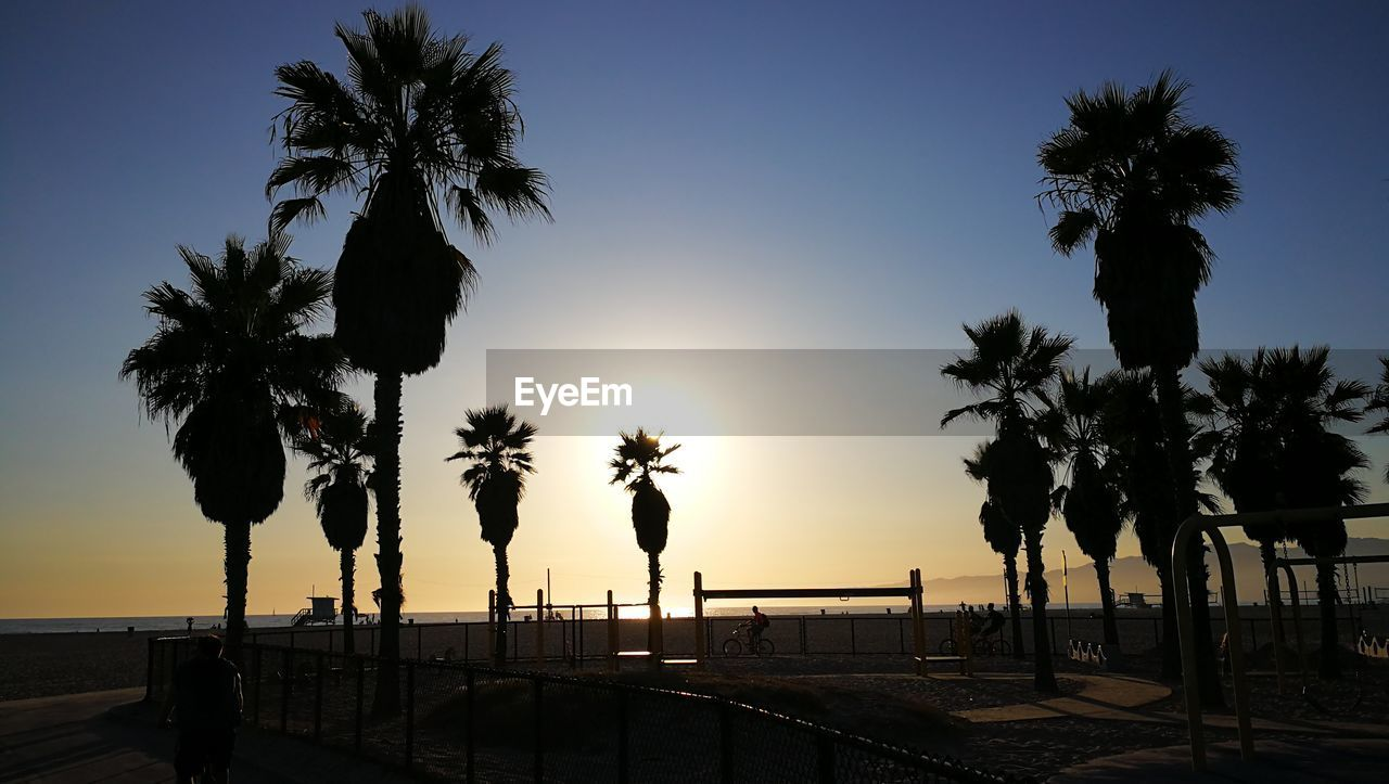 palm tree, sky, tropical climate, tree, sunset, silhouette, plant, water, beauty in nature, sea, nature, scenics - nature, beach, tranquility, tranquil scene, clear sky, no people, land, growth, sun, horizon over water, coconut palm tree, outdoors, tropical tree, swimming pool