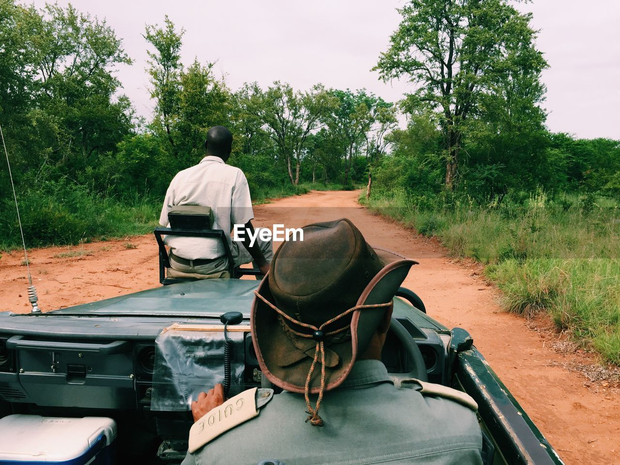 Rear View Of Park Rangers On Vehicle In Forest