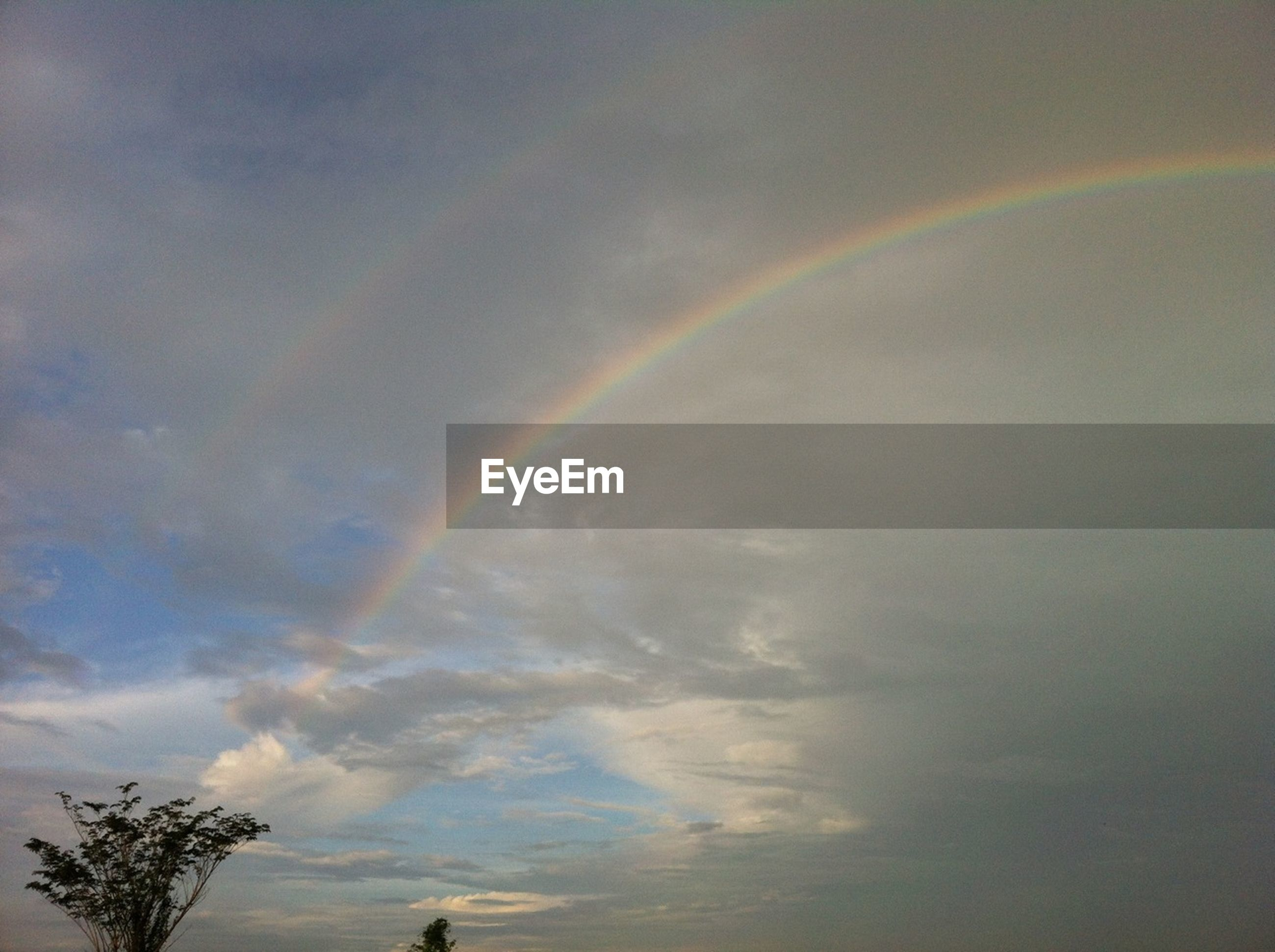sky, cloud - sky, beauty in nature, scenics, low angle view, tranquility, cloudy, tranquil scene, nature, tree, rainbow, idyllic, cloud, weather, multi colored, outdoors, no people, overcast, day, growth