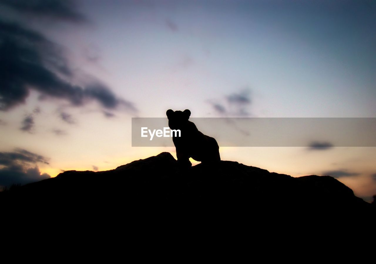 silhouette, sky, sunset, cloud - sky, mammal, nature, animal themes, animal, domestic animals, no people, vertebrate, rock, one animal, orange color, solid, domestic, rock - object, pets, mountain, standing, outdoors