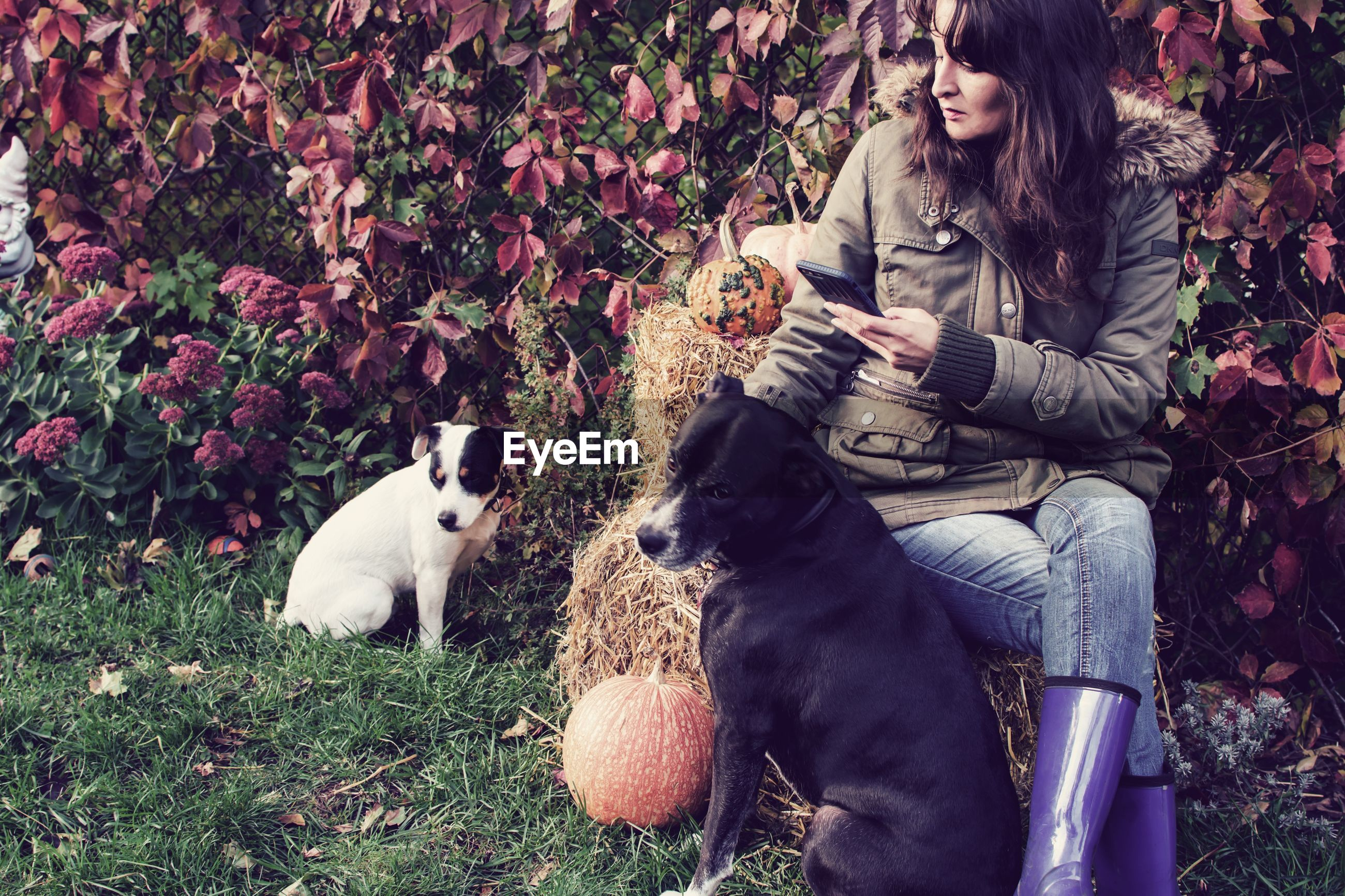 Young woman with dogs using mobile phone while sitting against plants