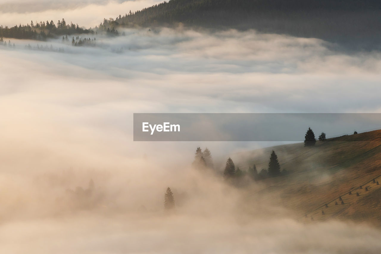 Aerial view of mountain by fog
