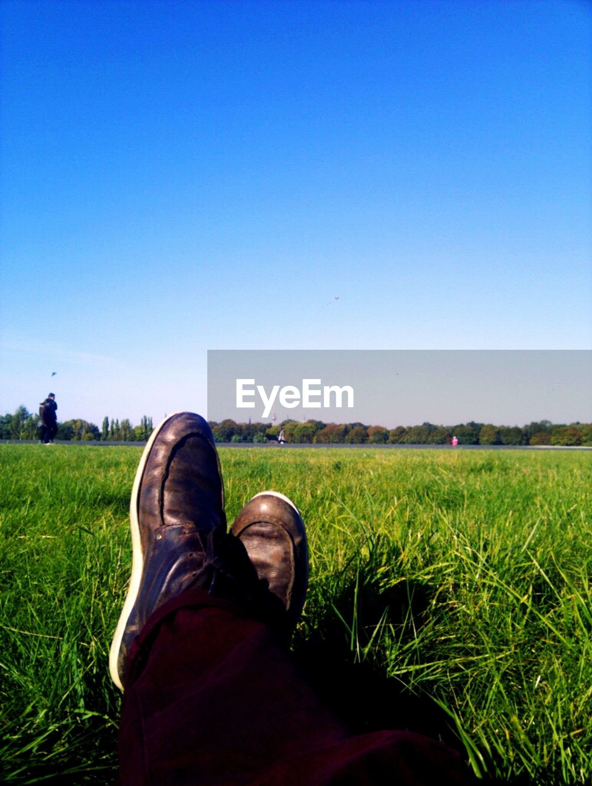 Cropped image of man relaxing on grassy field against clear sky