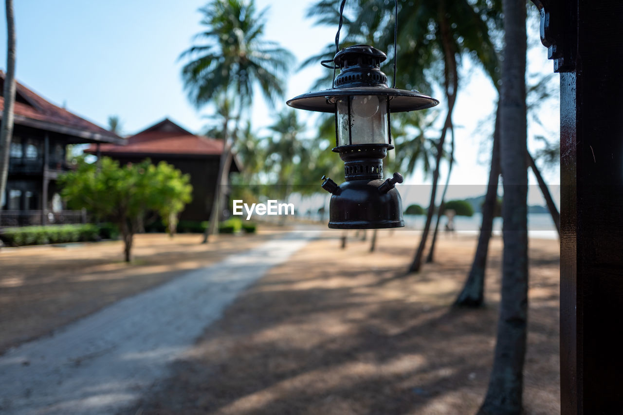 tree, lighting equipment, built structure, focus on foreground, architecture, plant, building exterior, no people, nature, street, day, outdoors, building, technology, street light, palm tree, selective focus, tropical climate, house, electric lamp