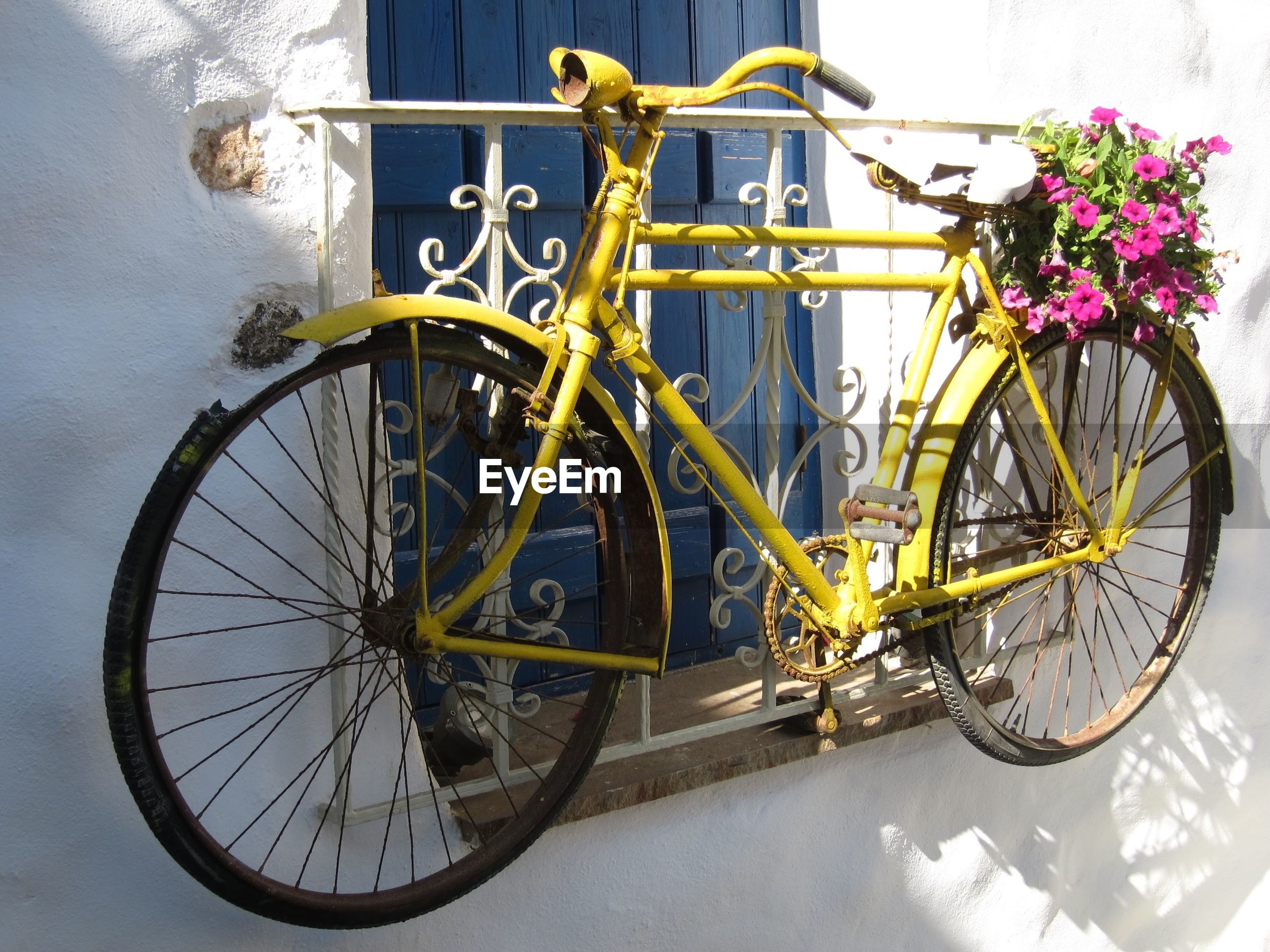 Abandoned yellow bicycle with flowering plant on window railing