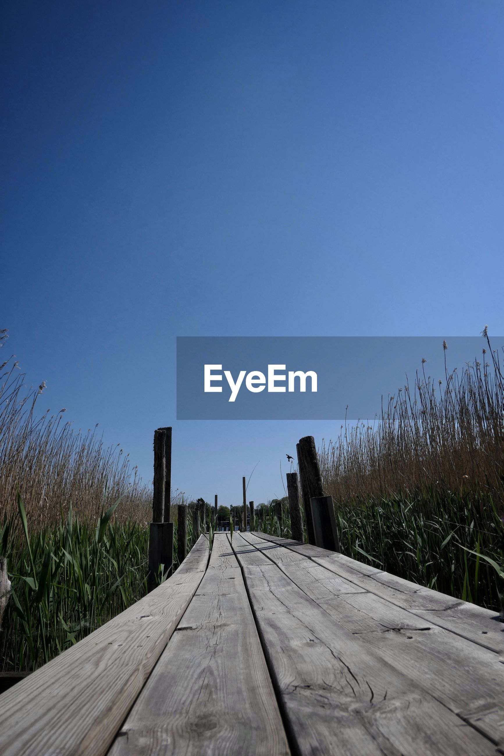 Surface level of boardwalk against clear blue sky