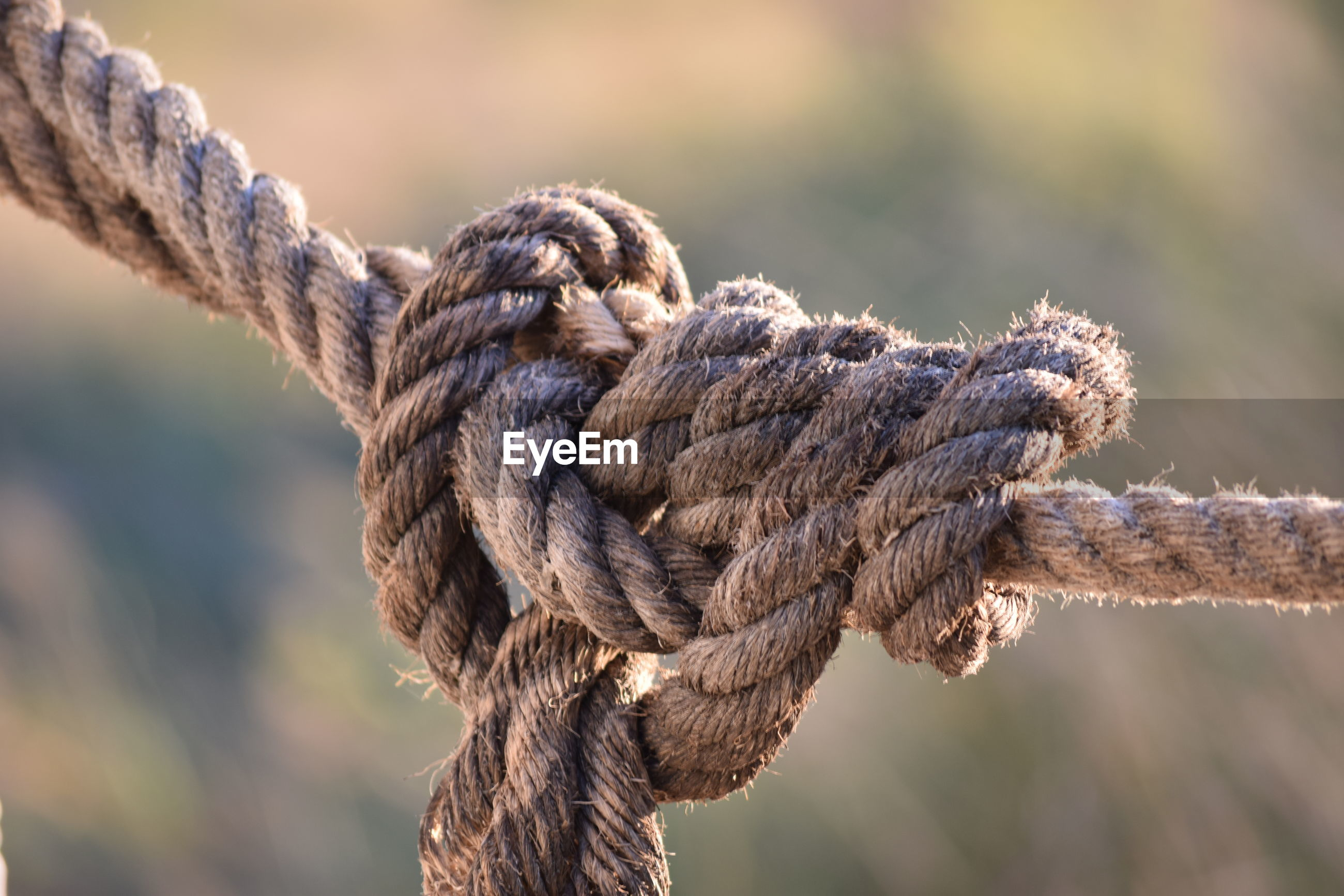 Close-up of messy tied rope