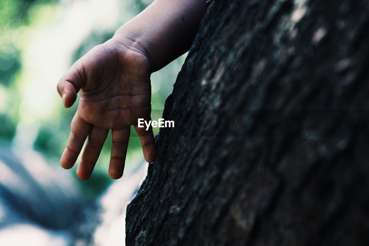 Close-Up Of Human Hand By Tree Trunk