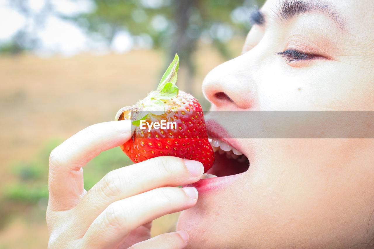 fruit, healthy eating, food, food and drink, strawberry, real people, one person, holding, berry fruit, focus on foreground, close-up, freshness, human body part, wellbeing, red, lifestyles, leisure activity, human hand, eating, hand, body part, mouth open, human face, temptation