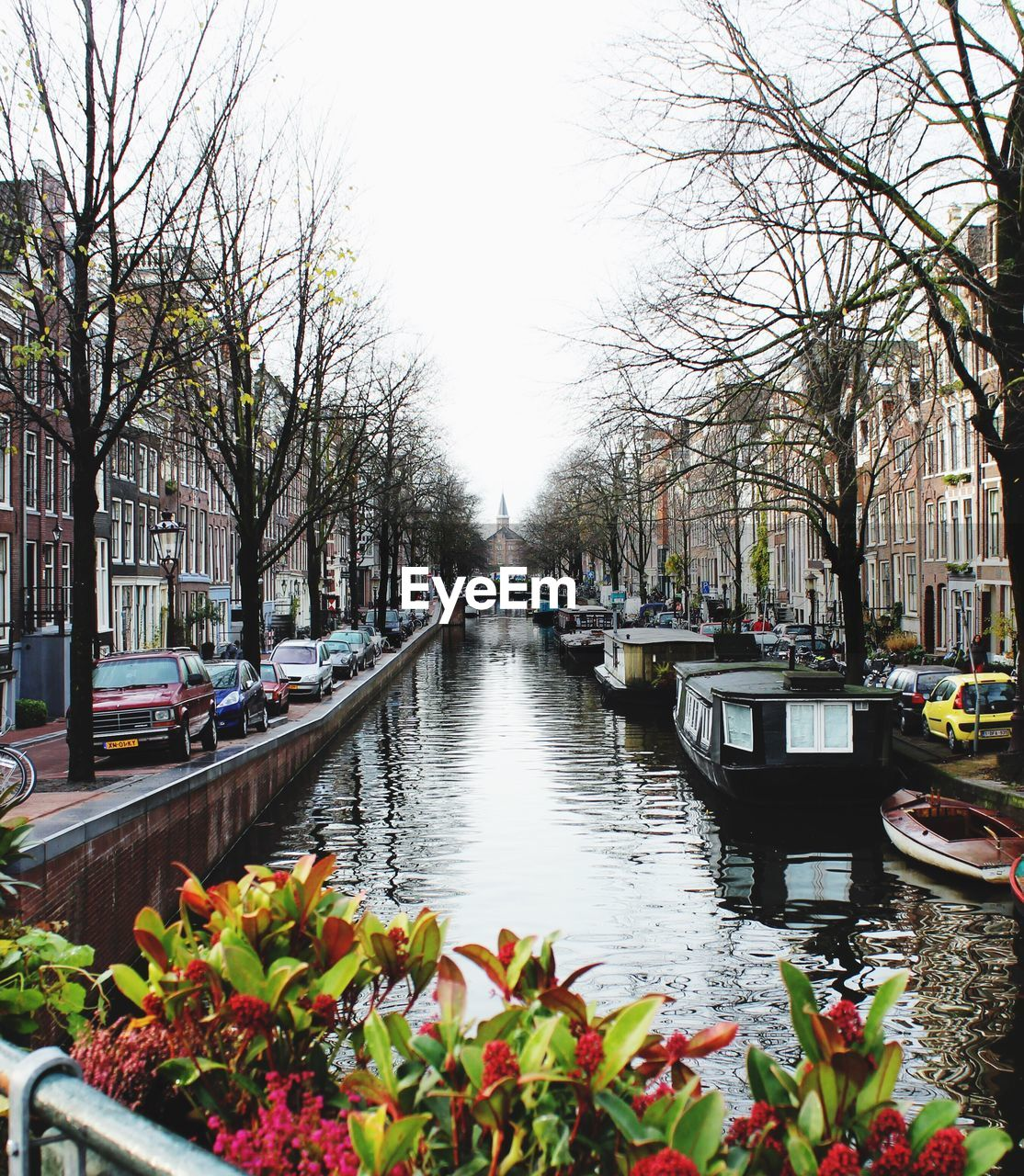 canal, transportation, tree, bare tree, water, day, mode of transport, nautical vessel, built structure, architecture, building exterior, nature, outdoors, flower, city, growth, no people, sky