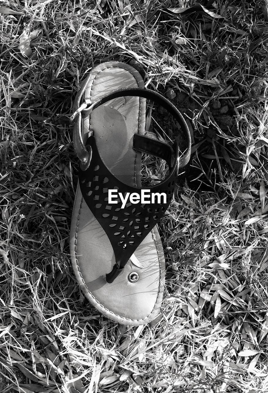 High angle view of abandoned footwear sandal on grassy field