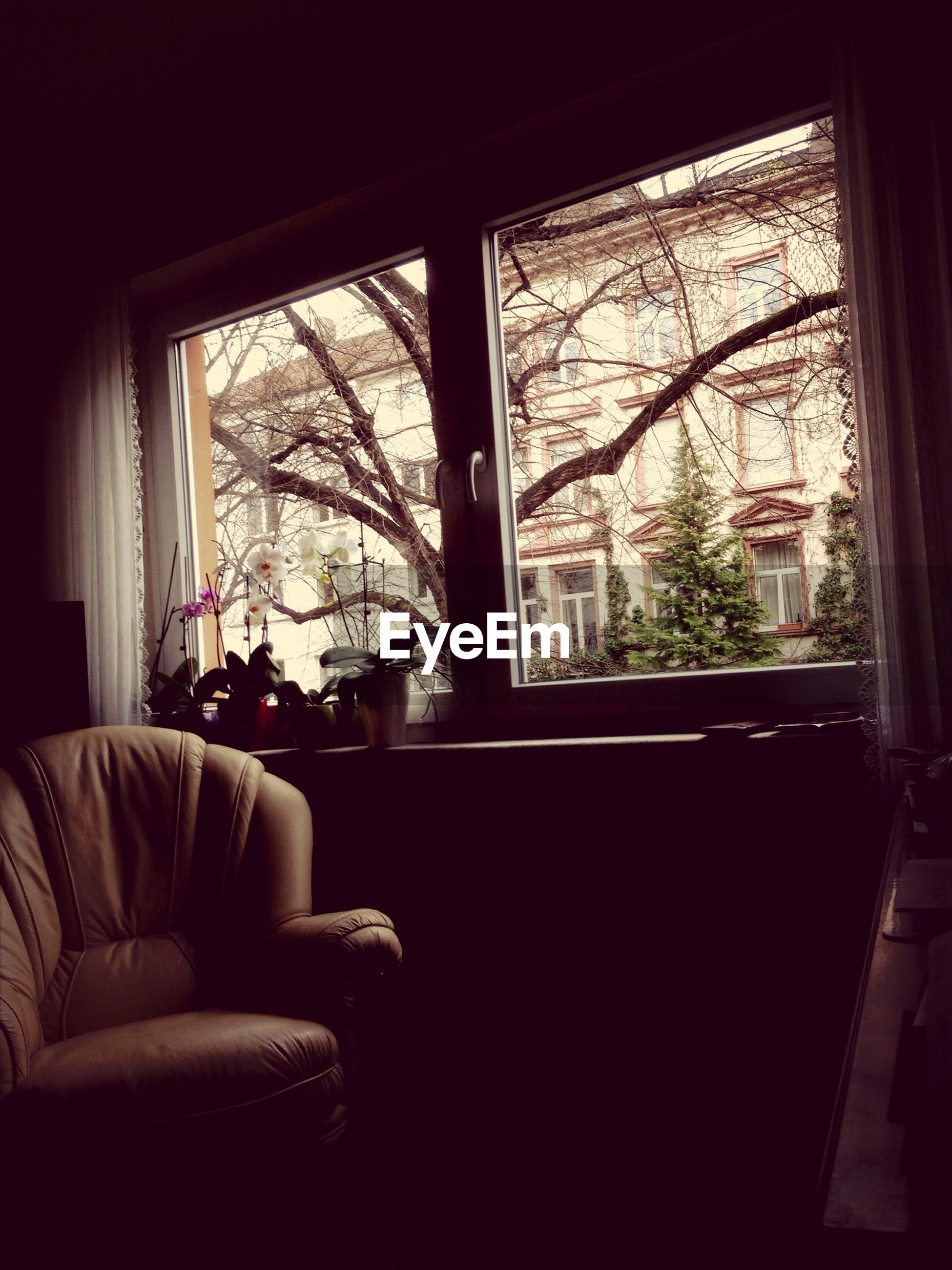 indoors, window, glass - material, transparent, home interior, curtain, looking through window, chair, window sill, house, table, tree, absence, domestic room, sofa, glass, bedroom, day, sitting, open