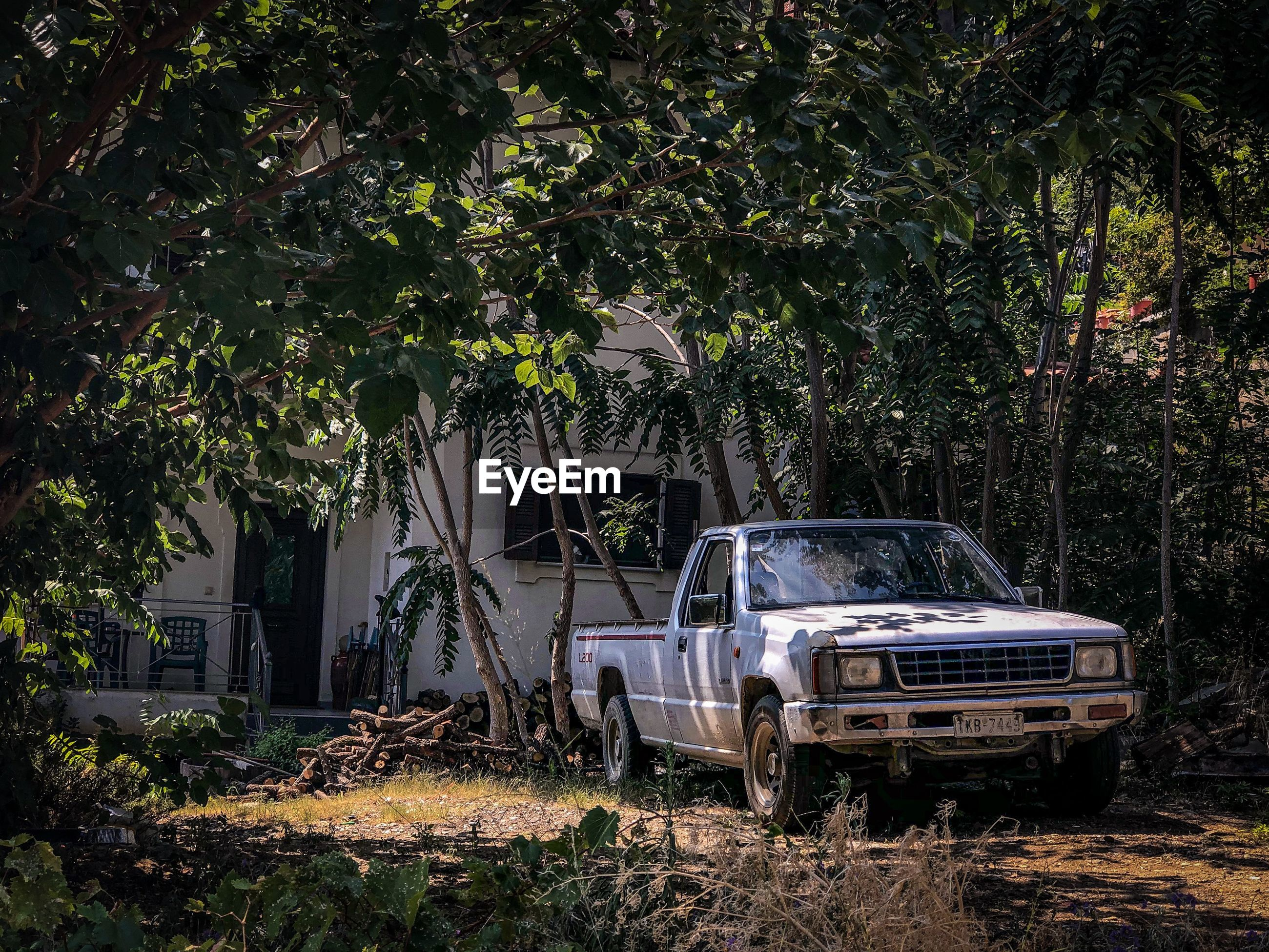 ABANDONED CAR IN YARD AGAINST TREES