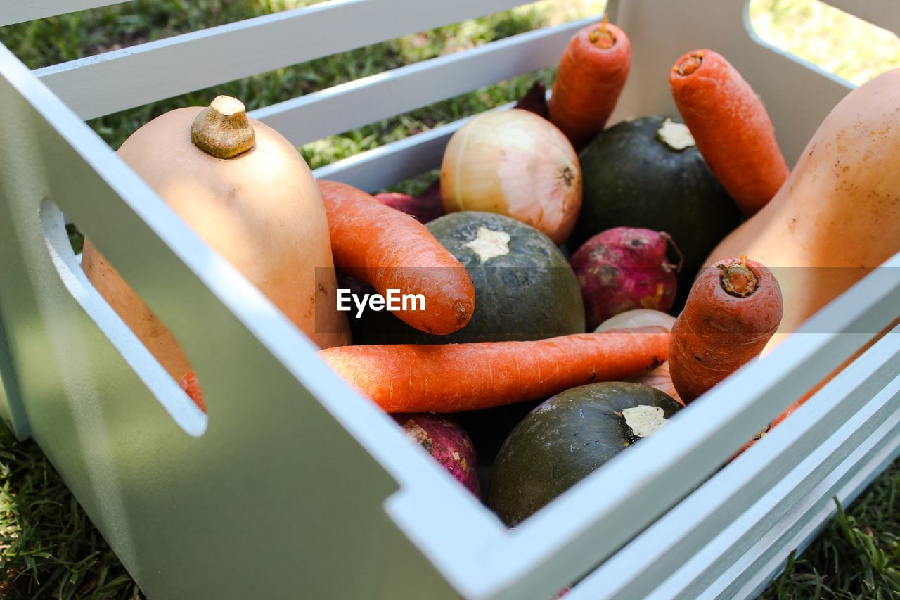 High angle view of fresh vegetables in crate