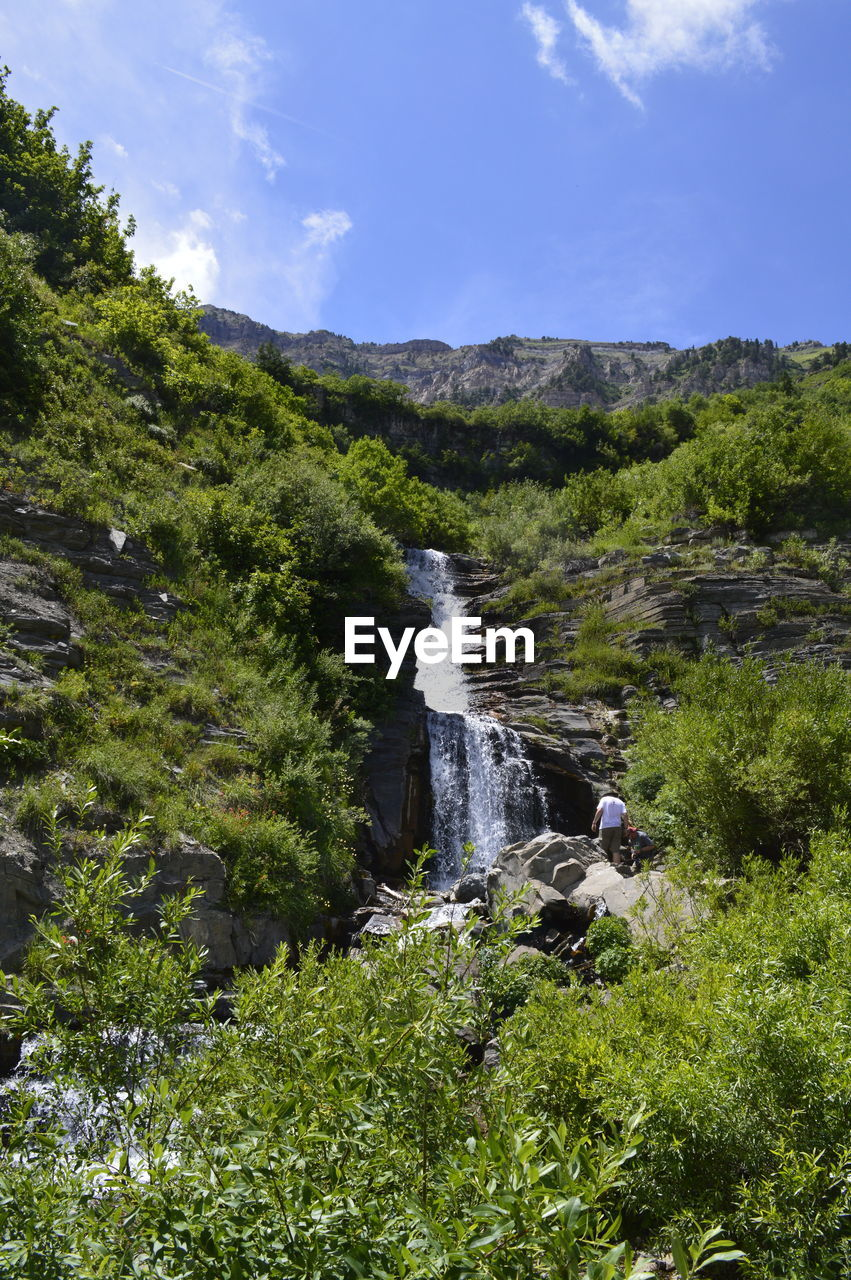 plant, scenics - nature, beauty in nature, water, nature, sky, green color, tree, growth, waterfall, motion, land, no people, day, environment, forest, flowing water, non-urban scene, tranquil scene, outdoors, flowing, power in nature