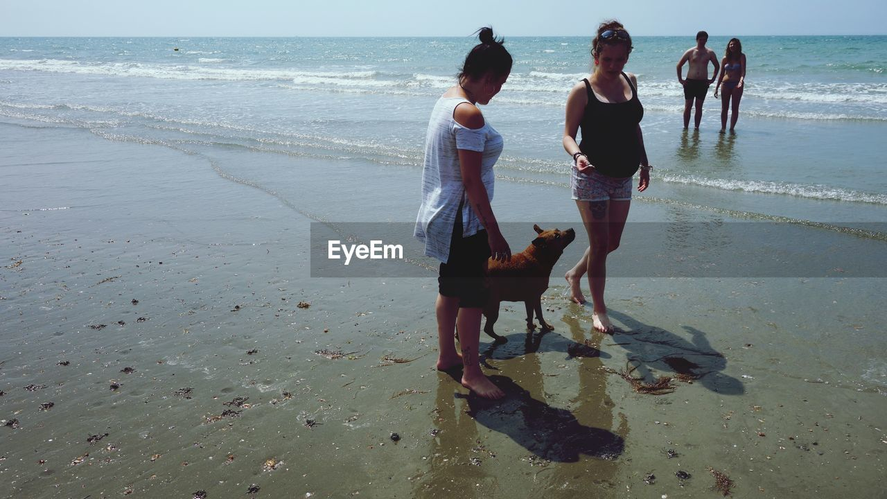 Women With Dog Walking At Beach