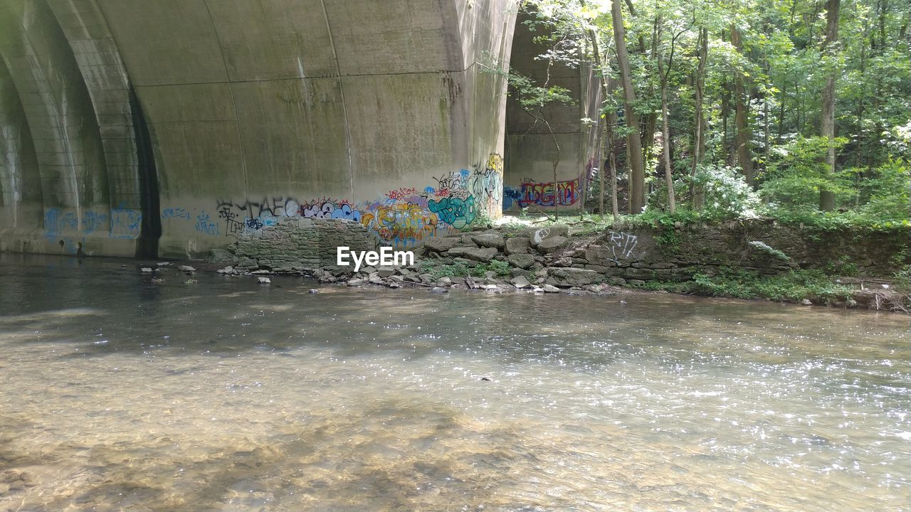 water, no people, day, nature, waterfront, built structure, outdoors, architecture, tree, plant, reflection, garbage, remote, transparent, graffiti, lake, wet, animal themes, pollution