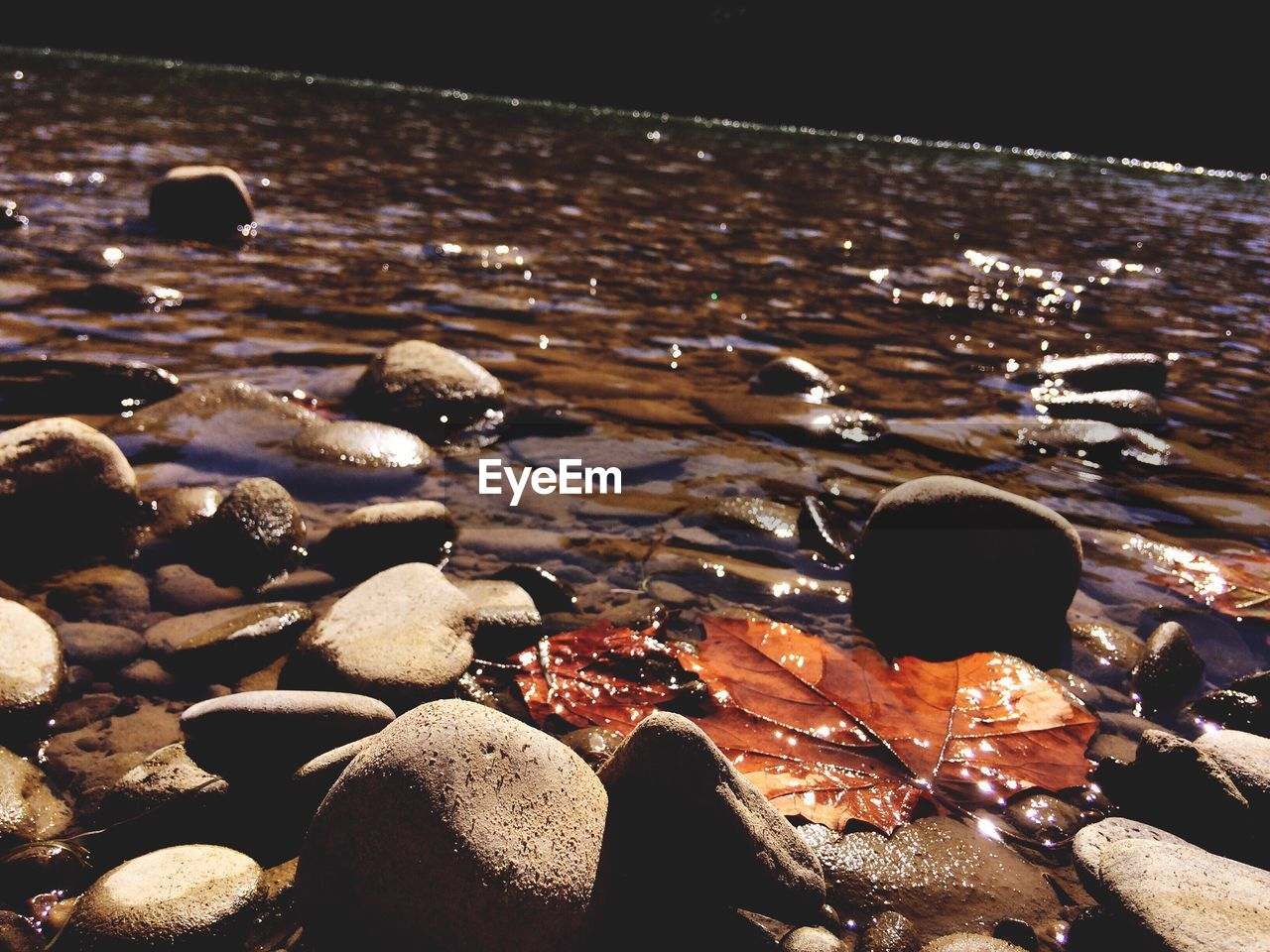 beach, water, shore, pebble, sea, nature, outdoors, pebble beach, sand, beauty in nature, no people, day, close-up