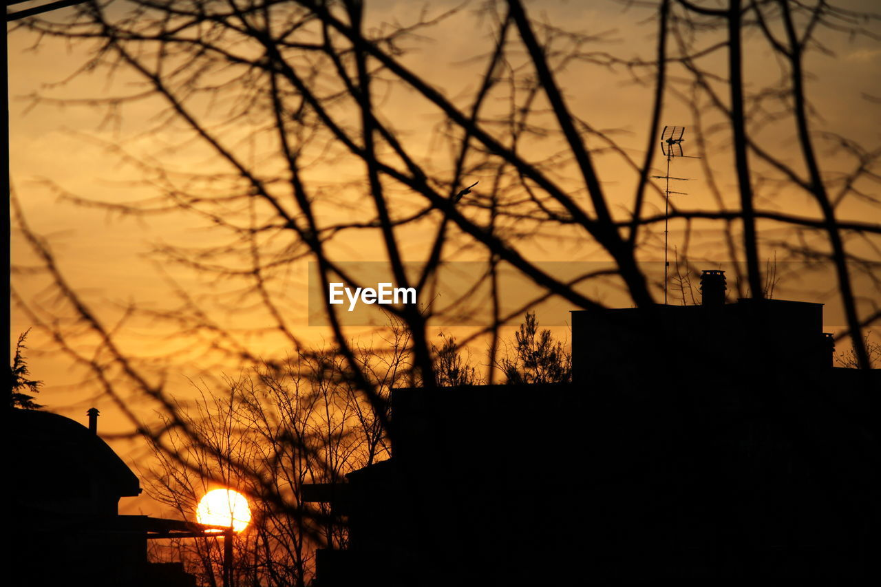 LOW ANGLE VIEW OF SILHOUETTE BARE TREES AGAINST SUNSET