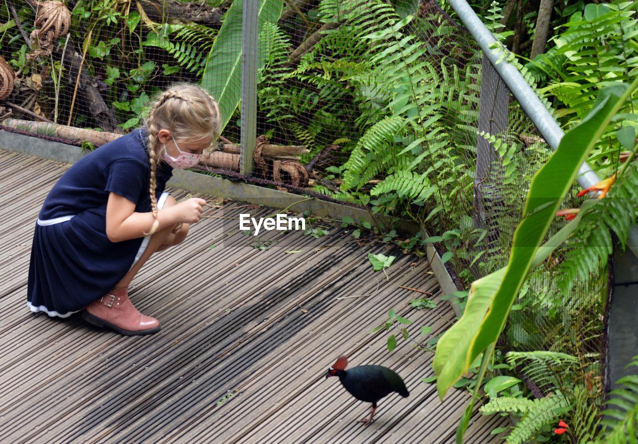 FULL LENGTH OF GIRL IN BIRD