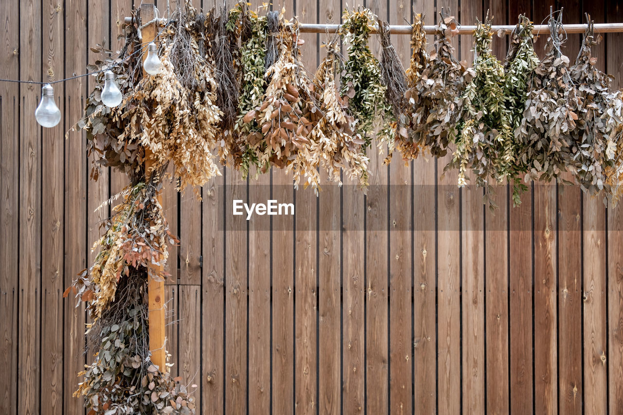 boundary, no people, barrier, nature, fence, hanging, decoration, wood - material, plant, day, outdoors, metal, christmas, large group of objects, tree, lighting equipment, architecture, close-up, building exterior, built structure