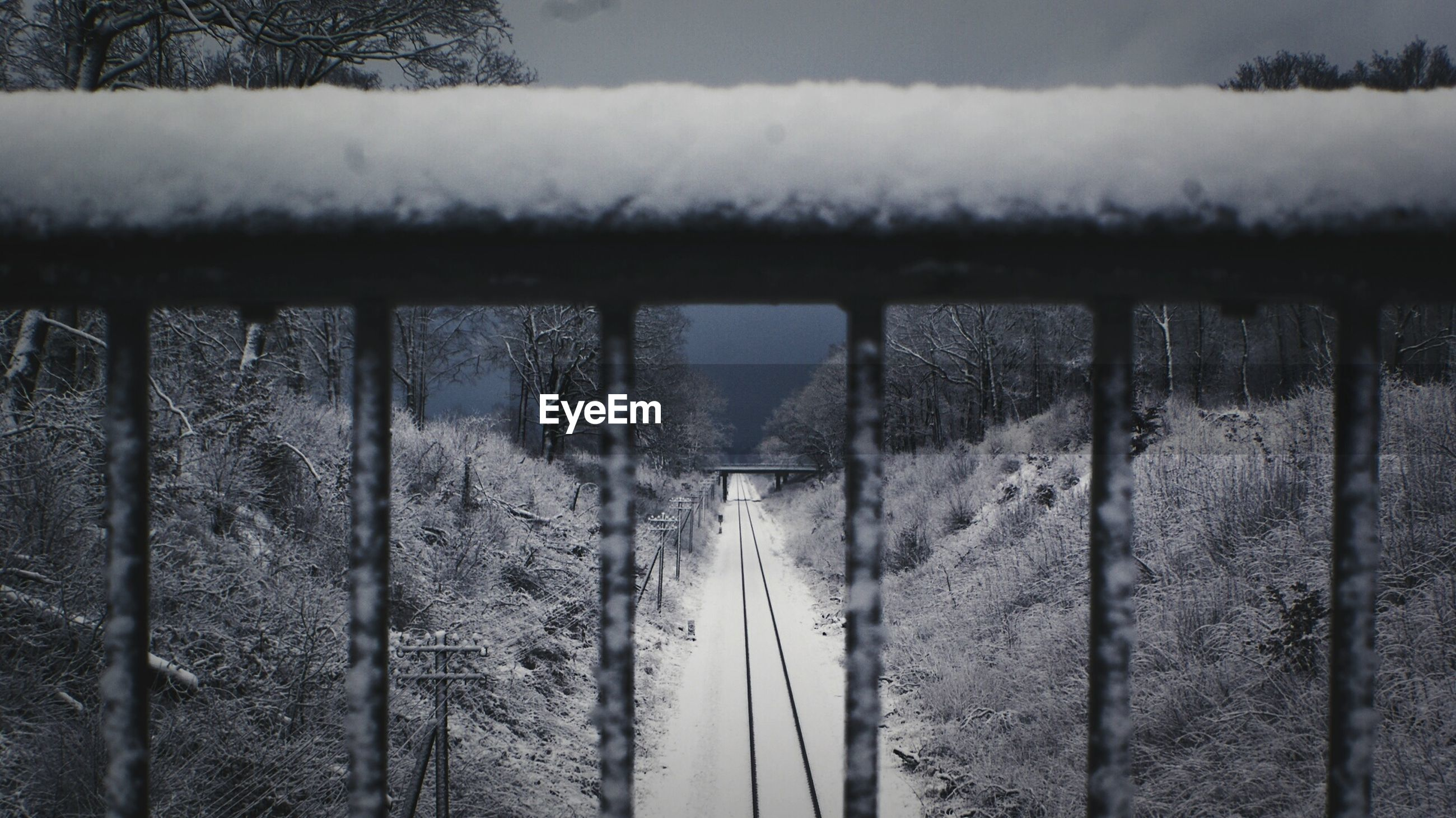 Snow covered railroad track amidst trees seen through railing