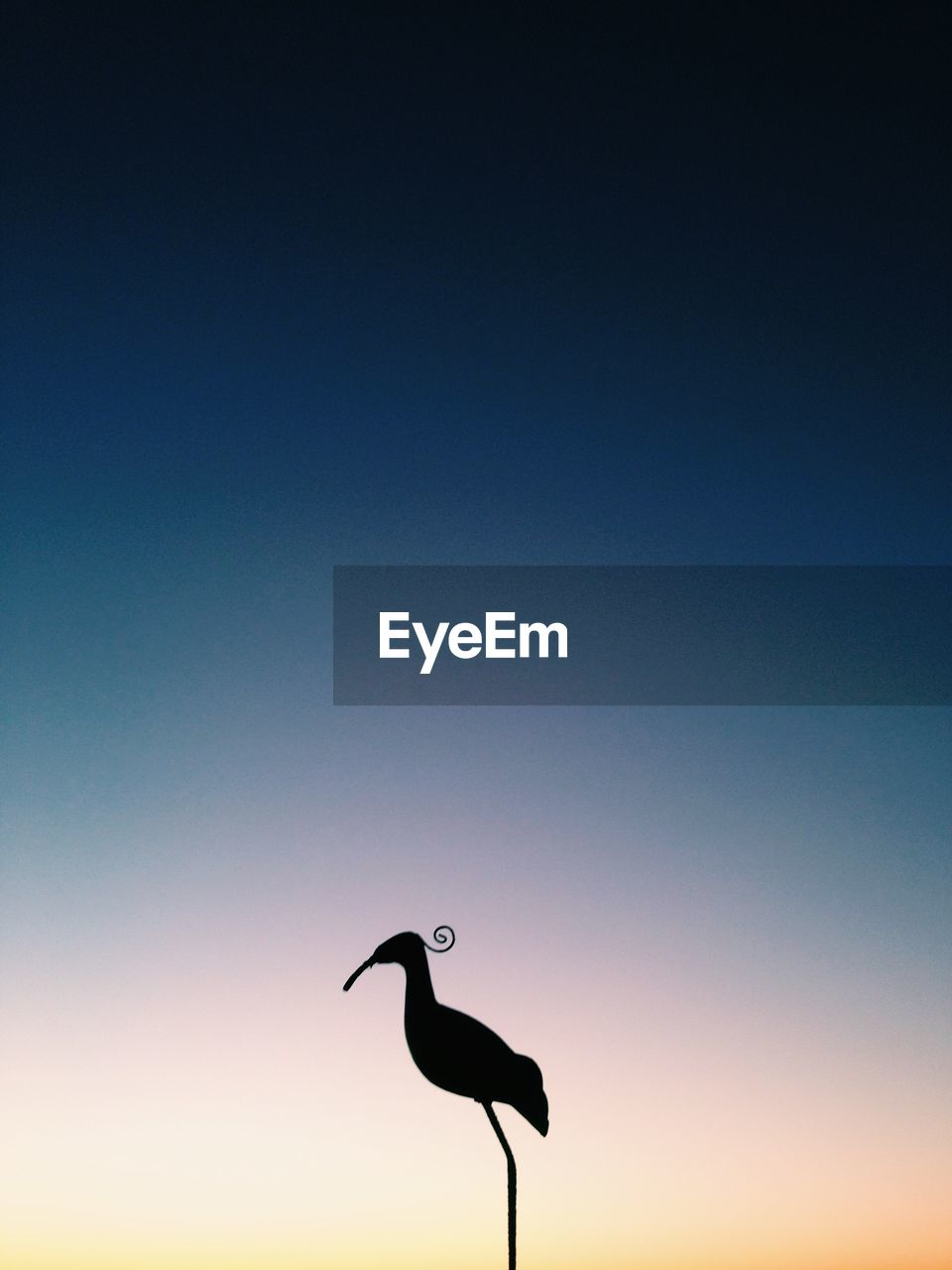 Silhouette Bird Against Clear Blue Sky During Sunset