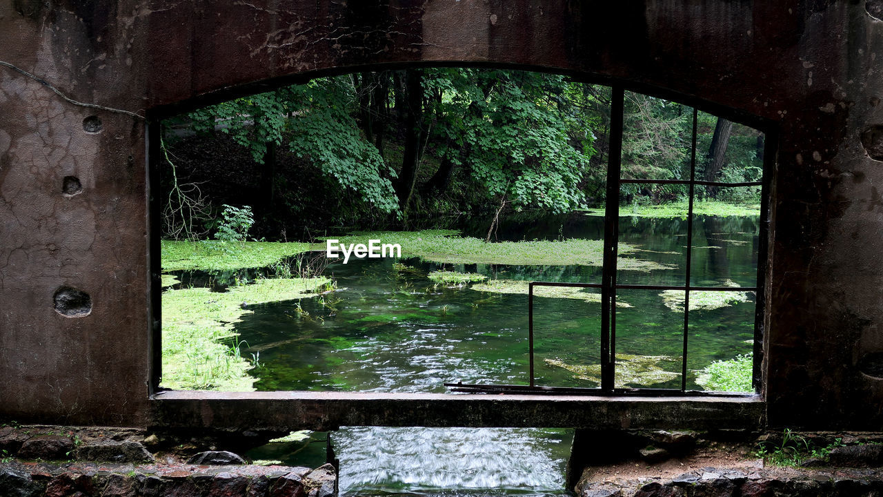 plant, tree, no people, day, abandoned, architecture, forest, nature, window, water, growth, outdoors, land, built structure, reflection, damaged, river, obsolete, green color, arch, deterioration