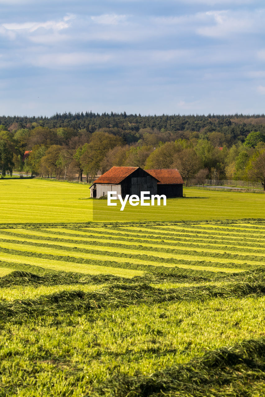 SCENIC VIEW OF FARM AND HOUSES AGAINST SKY