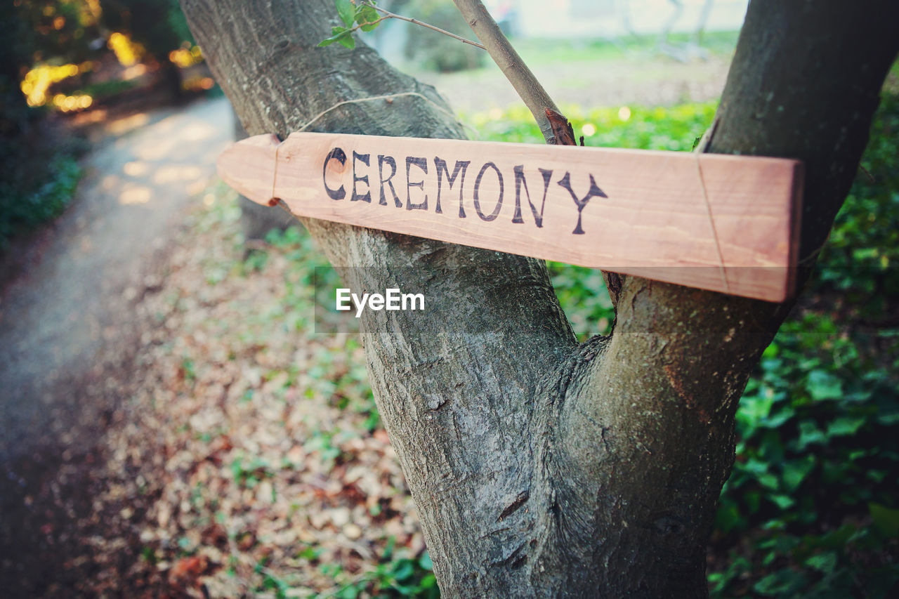 text, communication, western script, trunk, tree trunk, sign, plant, tree, focus on foreground, information, wood - material, no people, day, forest, information sign, close-up, nature, land, capital letter, guidance, outdoors, message, bark