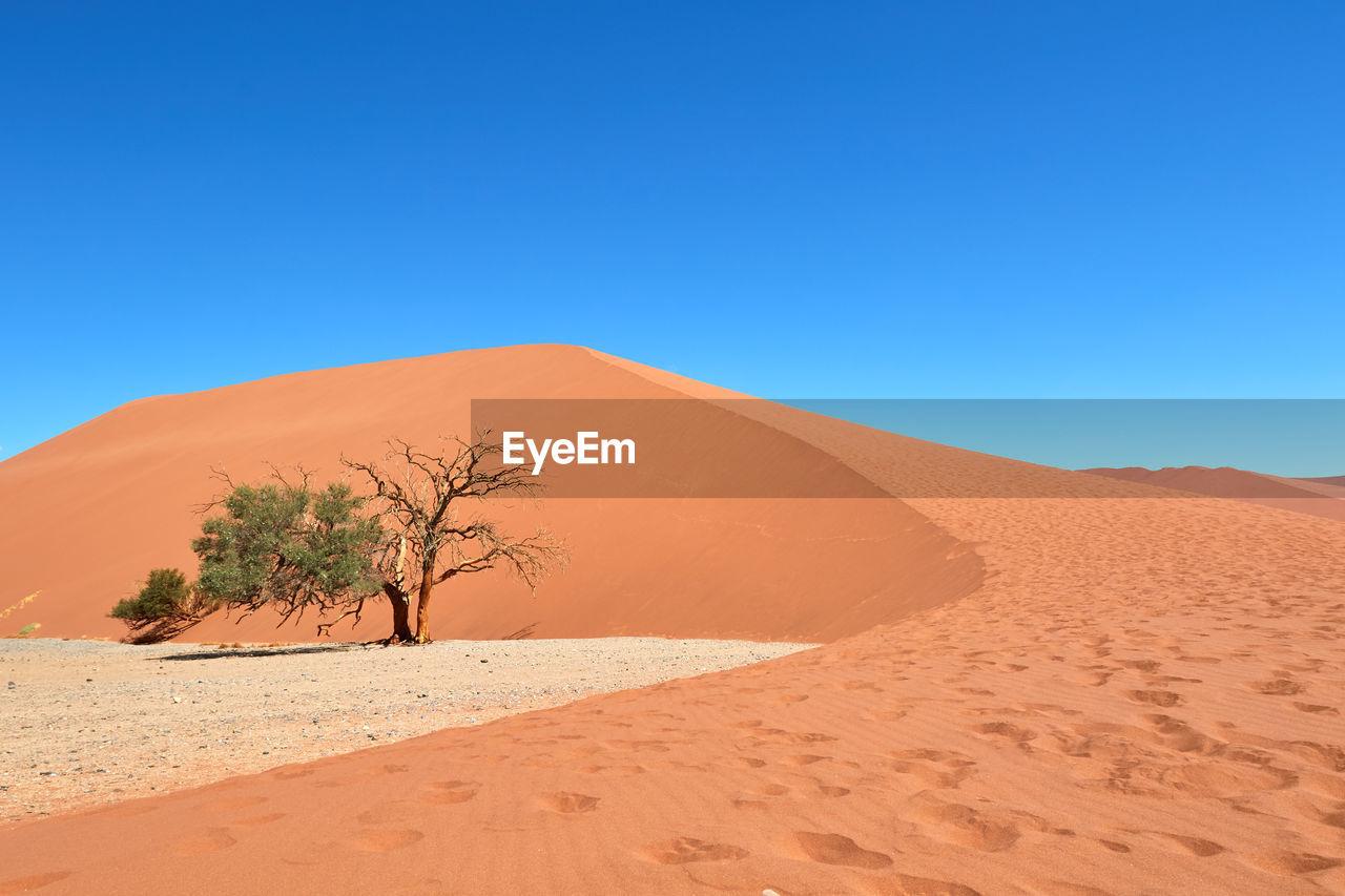 Sand dune in namib-naukluft national park