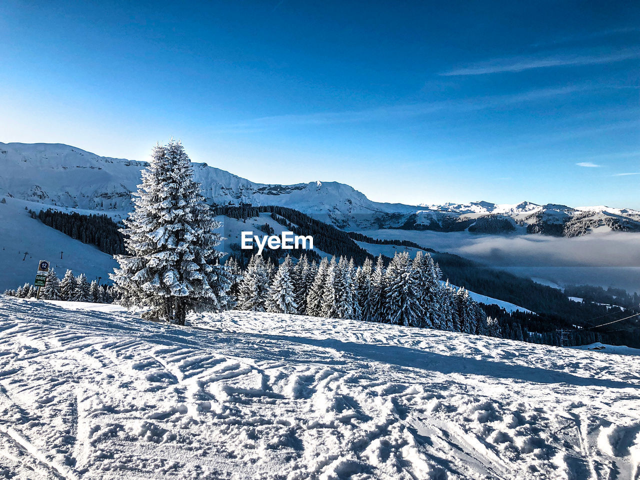 snow, cold temperature, winter, tree, scenics - nature, beauty in nature, sky, tranquil scene, plant, mountain, tranquility, white color, blue, non-urban scene, nature, environment, landscape, day, no people, snowcapped mountain