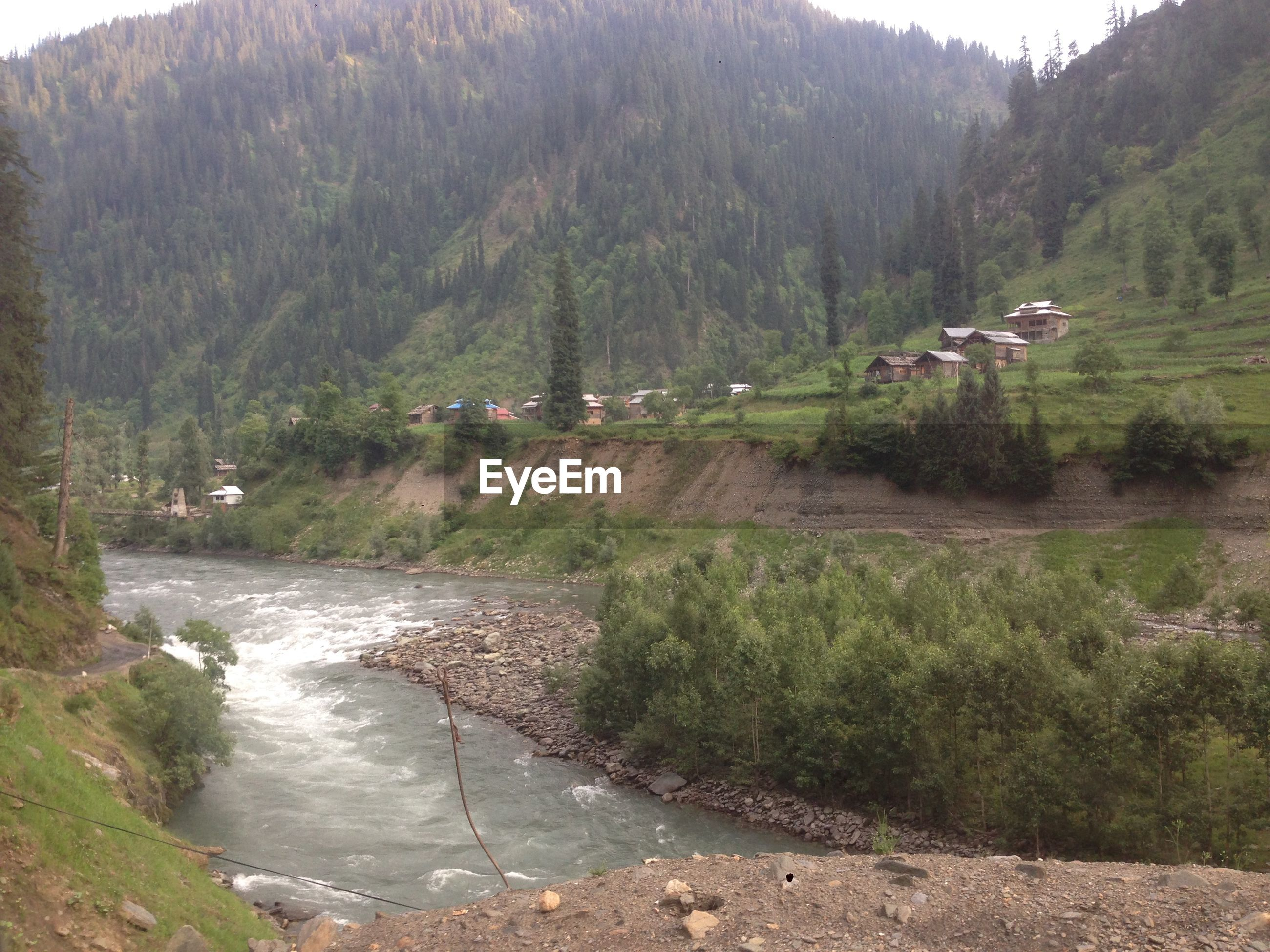 HIGH ANGLE VIEW OF RIVER FLOWING AMIDST TREES IN FOREST