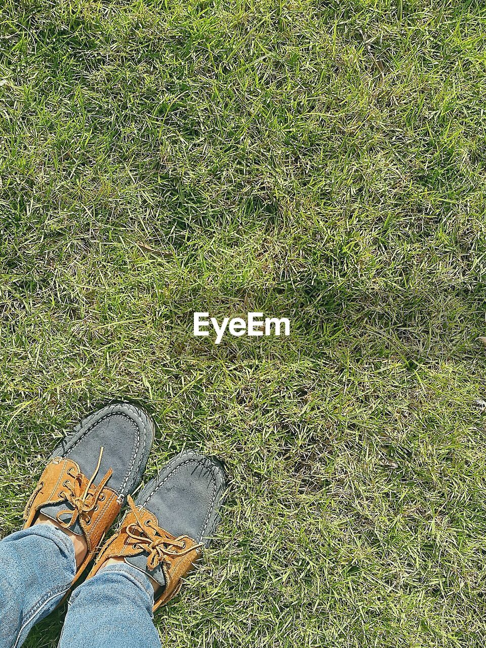 Low section of man wearing shoes while standing on grassy field