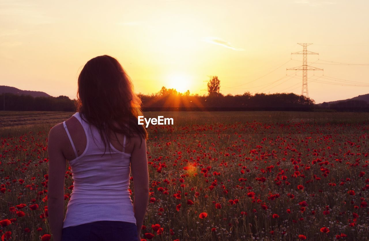 Rear View Of Woman Standing In Poppy Field Against Sky During Sunset
