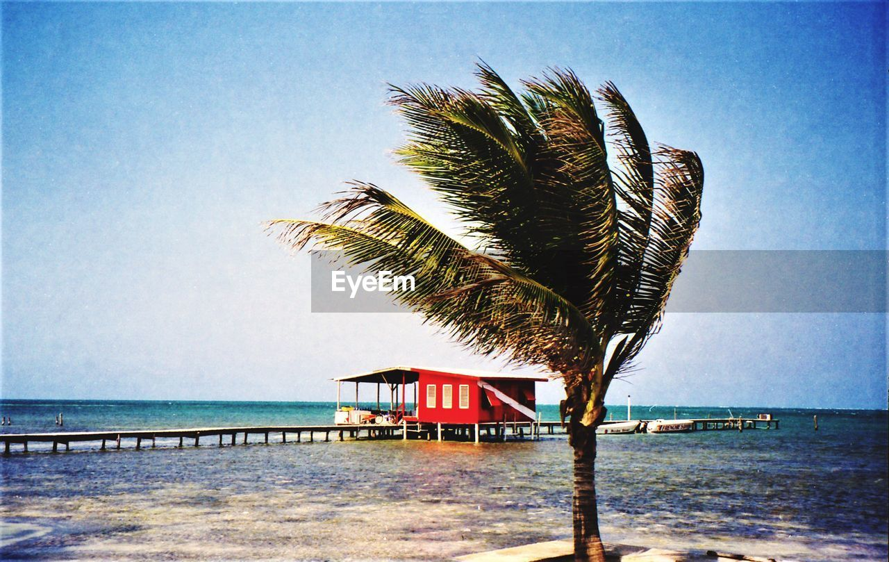 water, sky, sea, tropical climate, palm tree, built structure, nature, tree, plant, architecture, horizon over water, beach, scenics - nature, horizon, beauty in nature, land, no people, day, tranquil scene, outdoors, palm leaf, coconut palm tree