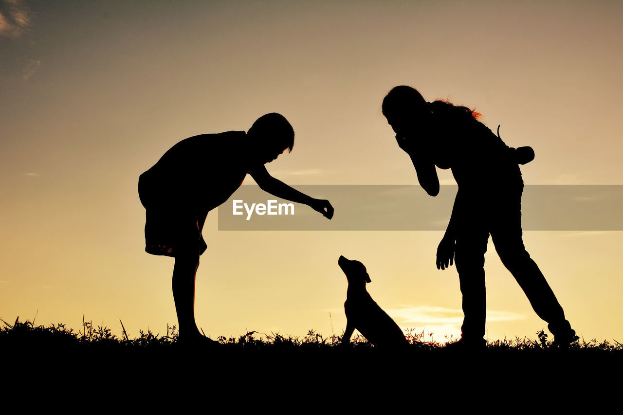 Silhouette sibling playing with dog on grassy field against sky during sunset