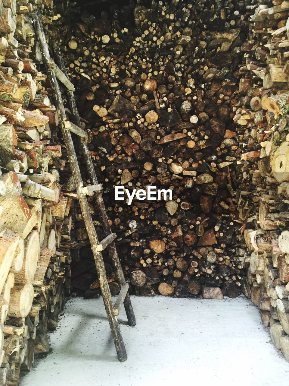 no people, wood - material, nature, day, winter, log, snow, firewood, lumber industry, abundance, outdoors, wood, deforestation, cold temperature, tree, timber, architecture, stack, forest, large group of objects, woodpile