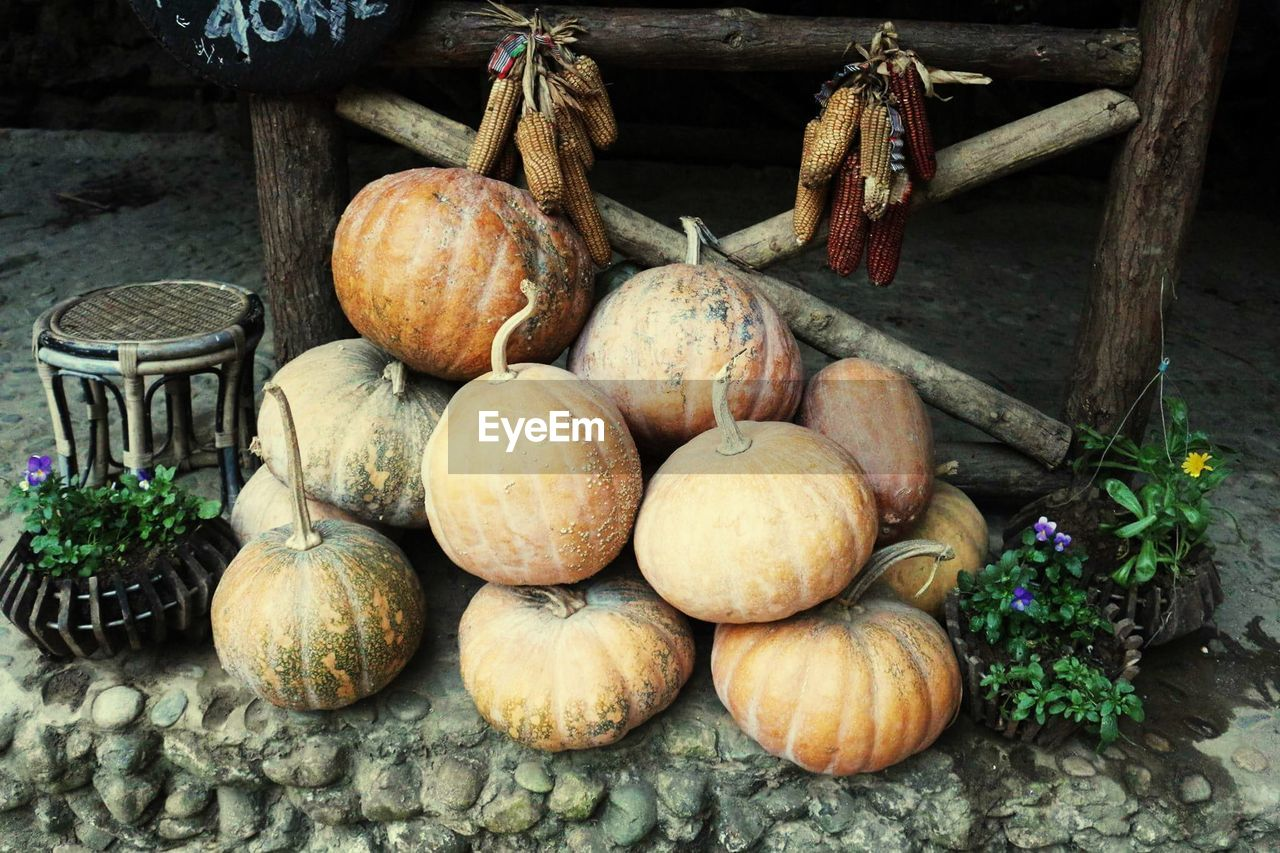 High angle view of pumpkins on footpath