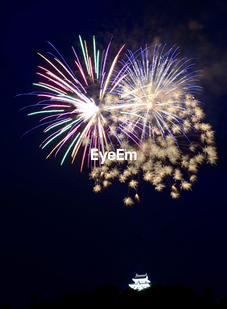 Illuminated Firework Display Against Sky