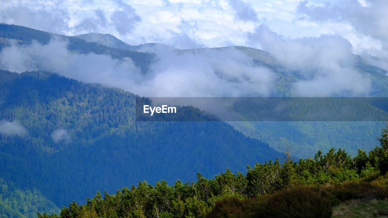 mountain, tree, beauty in nature, scenics - nature, tranquil scene, plant, tranquility, day, non-urban scene, no people, sky, nature, growth, cloud - sky, smoke - physical structure, land, environment, forest, idyllic, outdoors, power in nature, mountain peak