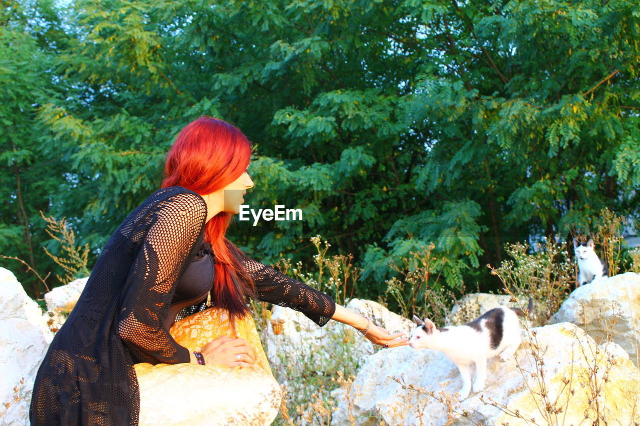 Side View Of Young Woman Petting Cat On Rock At Park
