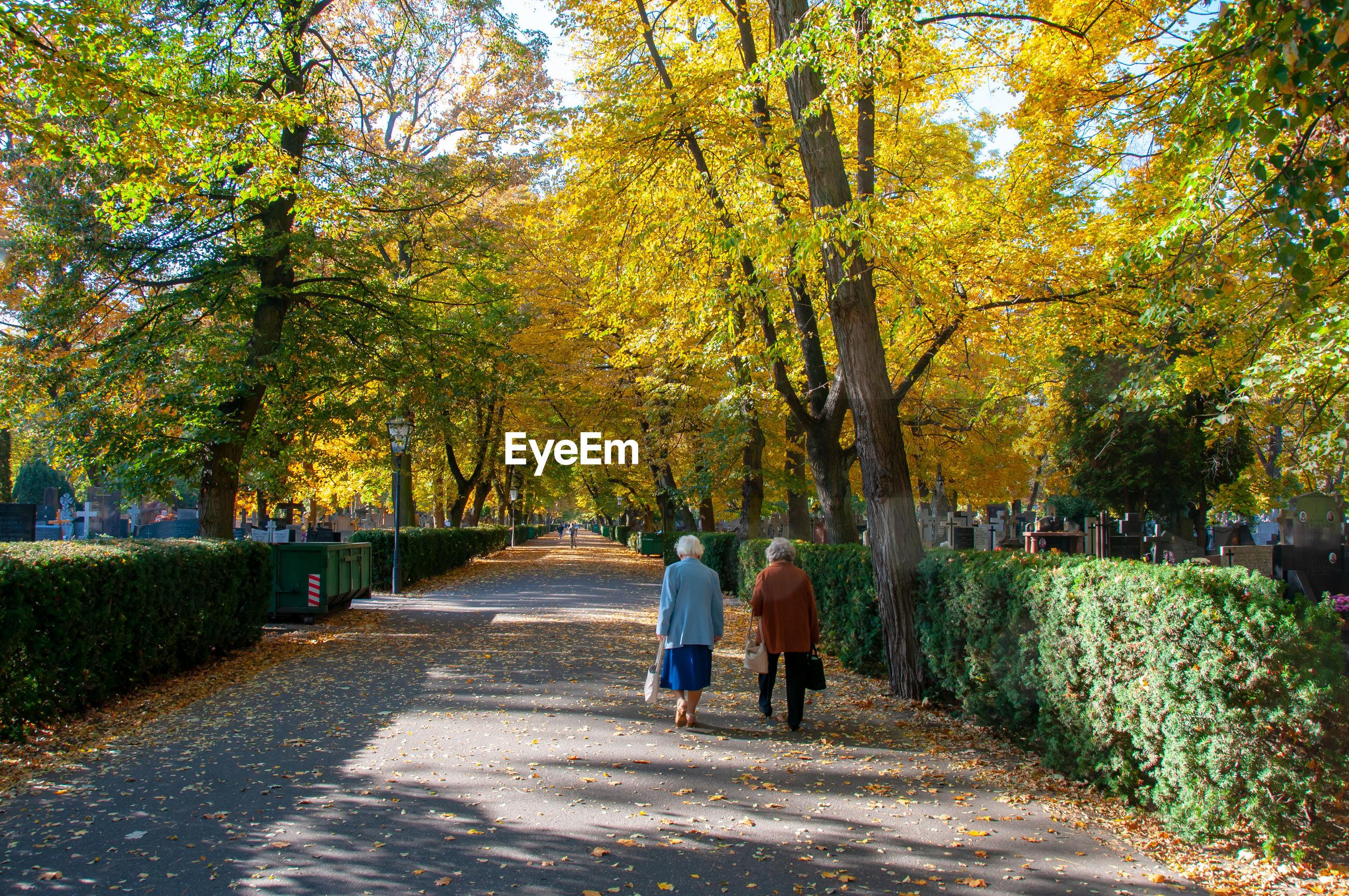 REAR VIEW OF PEOPLE WALKING ON FOOTPATH IN AUTUMN