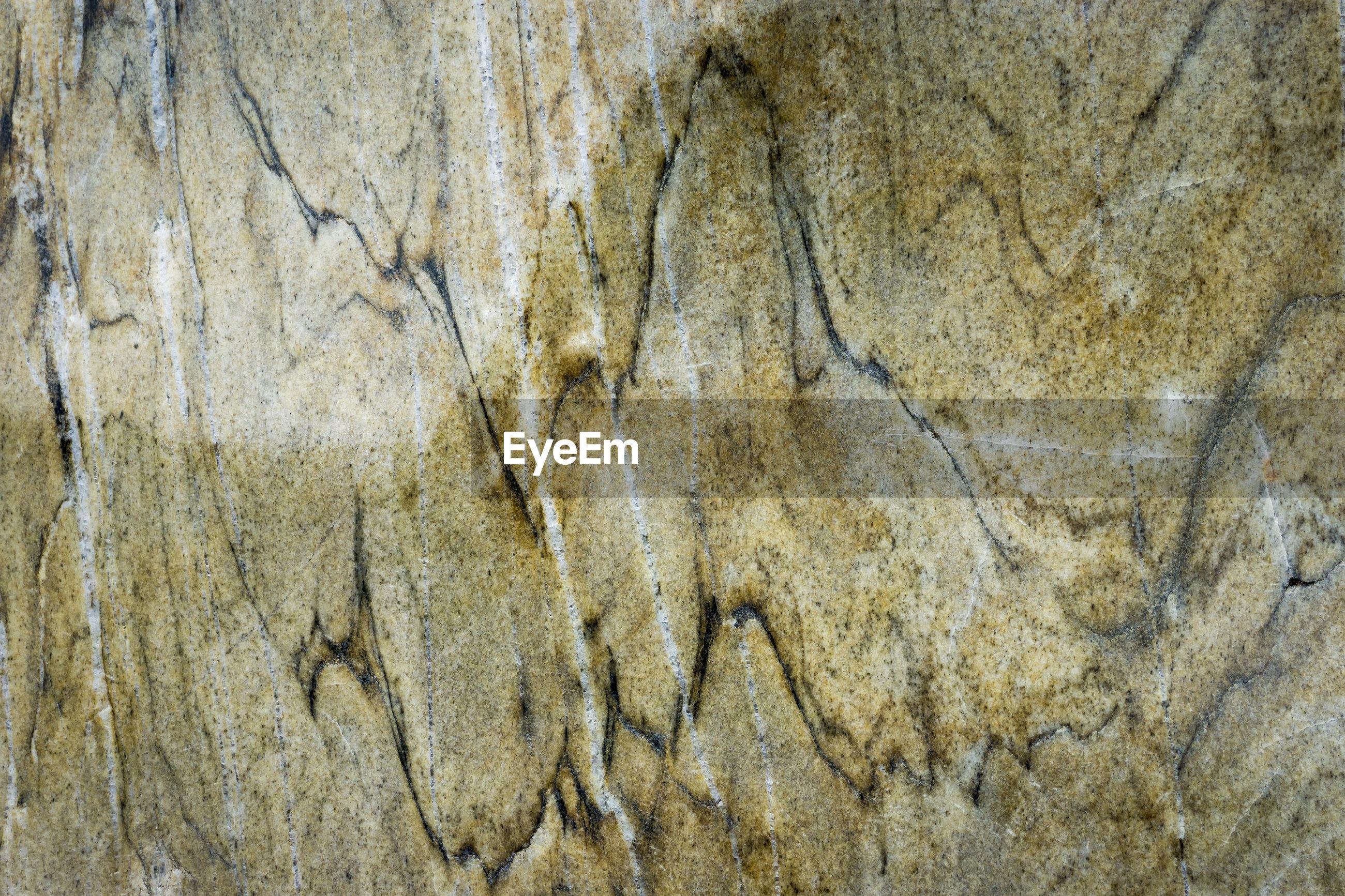 Full frame shot of patterned rock at tiergarten