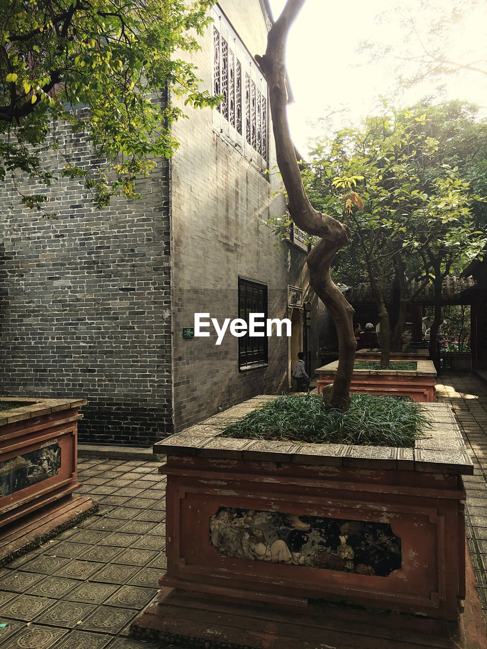 built structure, architecture, building exterior, tree, growth, plant, steps, railing, day, outdoors, wall - building feature, potted plant, no people, house, brick wall, sunlight, metal, bench, absence, front or back yard