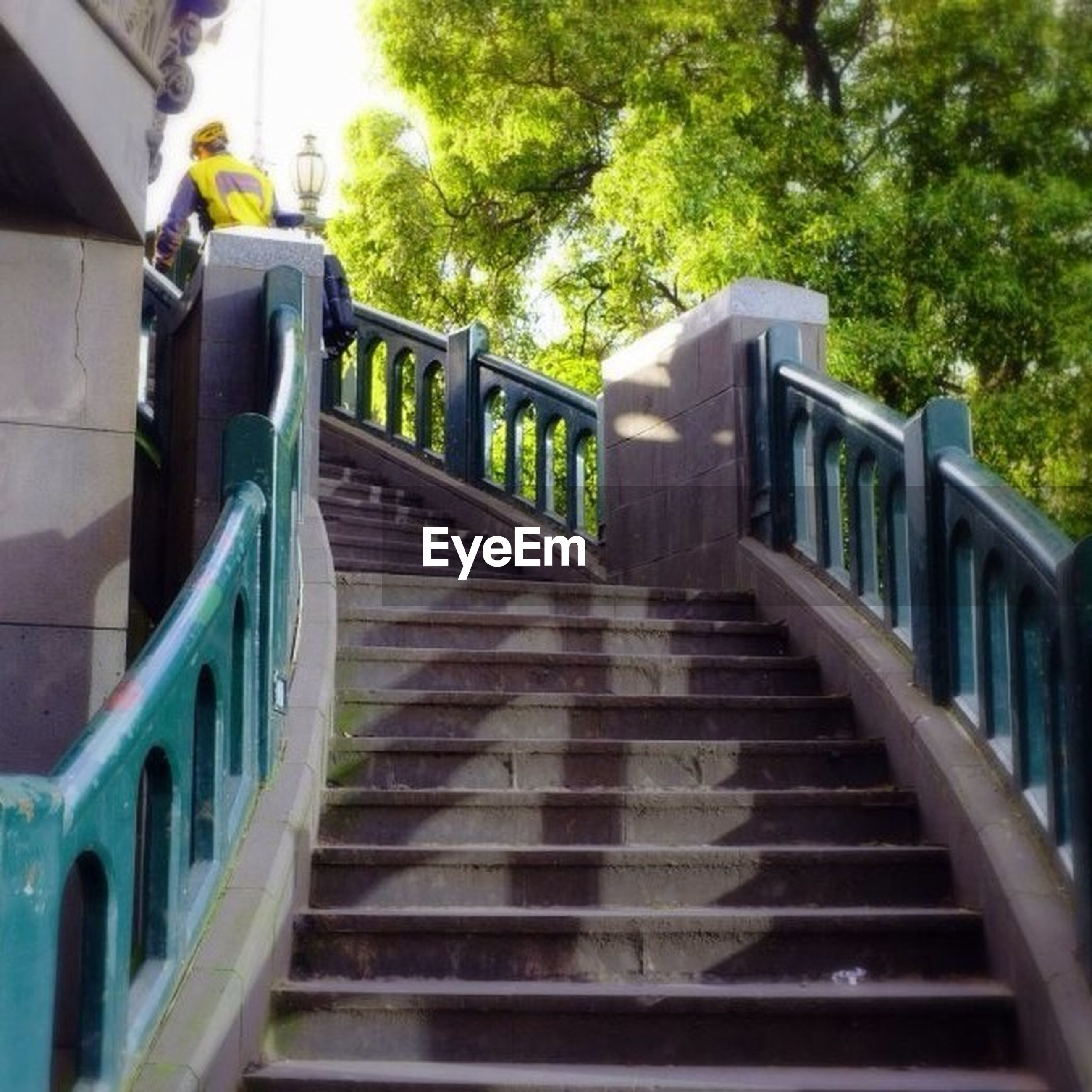 steps, railing, steps and staircases, staircase, built structure, architecture, the way forward, building exterior, tree, stairs, diminishing perspective, high angle view, footbridge, building, no people, day, transportation, vanishing point, low angle view, outdoors