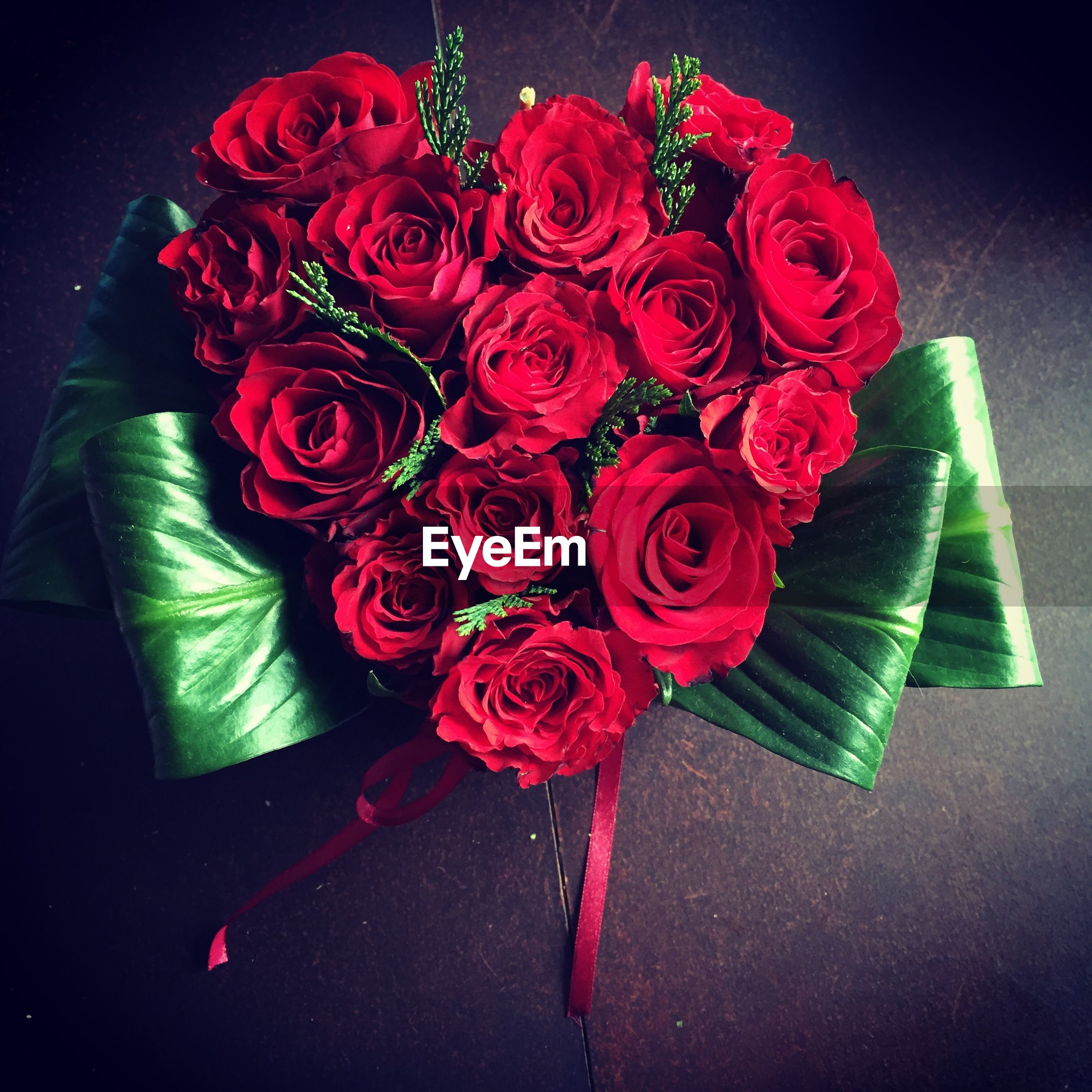 Directly above shot of roses with green bow